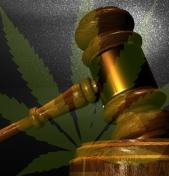 Best Practices: Dealing with marijuana, opioid use