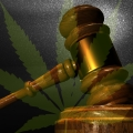 Michigan Court Of Appeals Rules In Favor Of Employer In Medical Marijuana Case